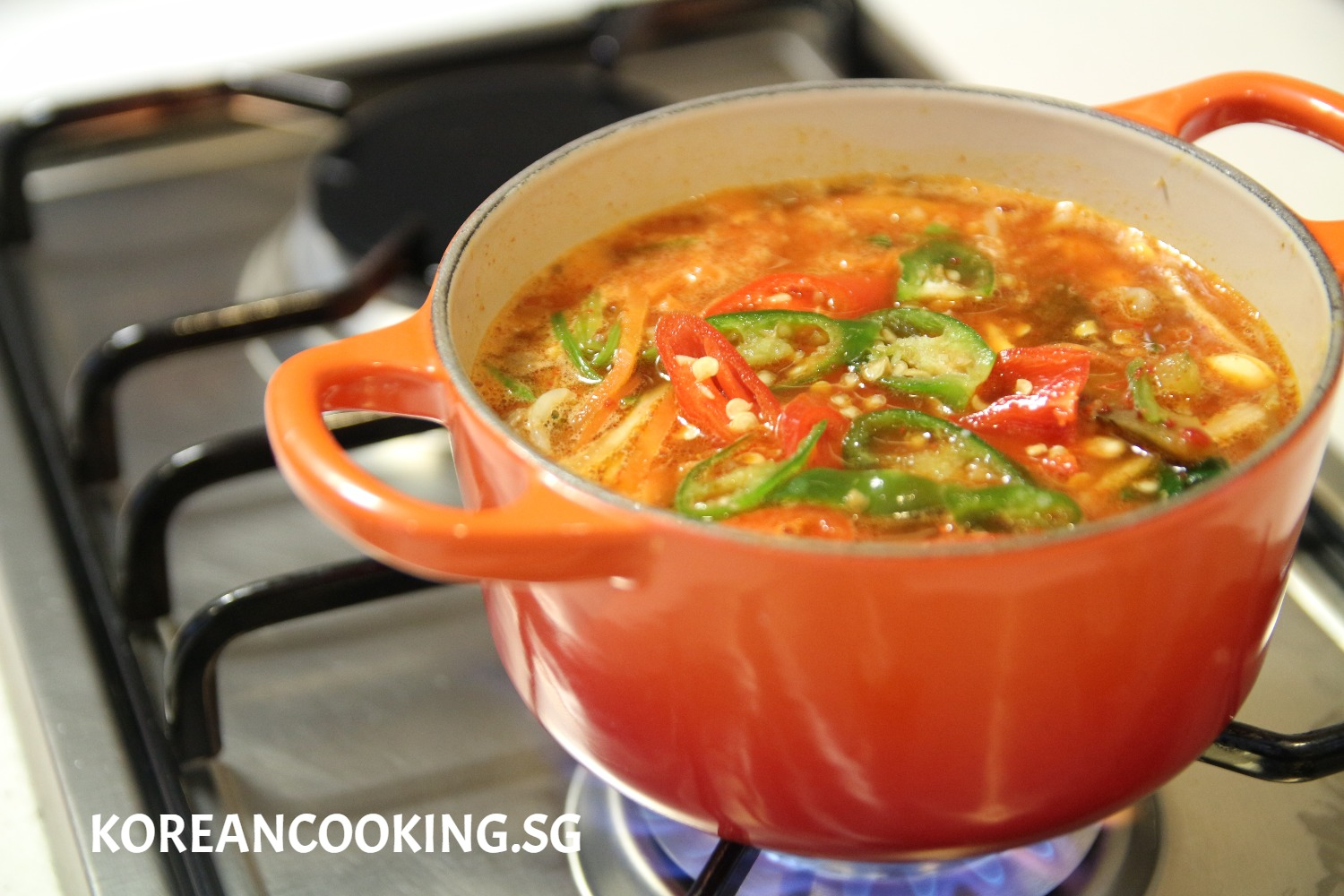 SPICY BEEF & VEGETABLES SOUP